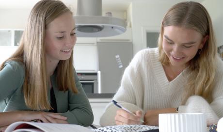 Få målrettet hjælp til din eksamen og bliv eksamensklar